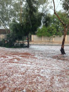 After the hailstorm