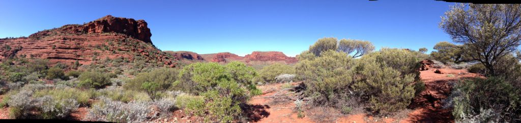 Landscape - Alice Springs