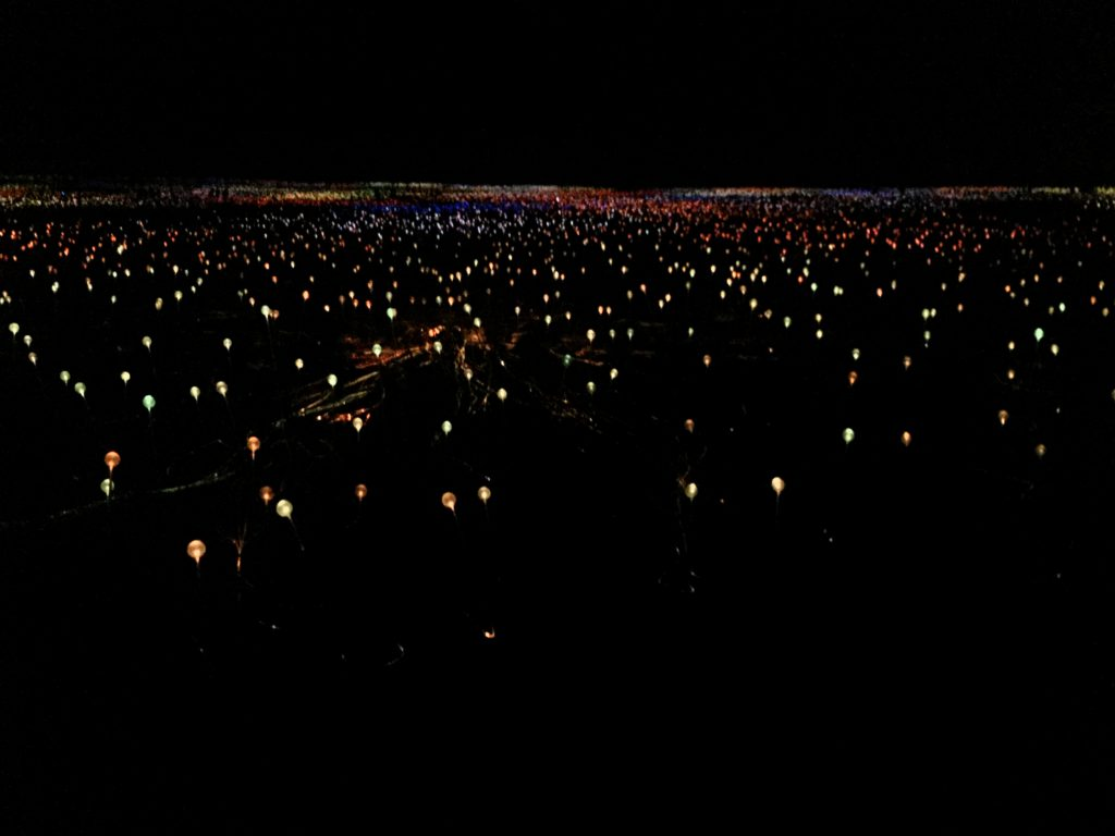 Field of Lights - Art installation - Yulara/Uluru
